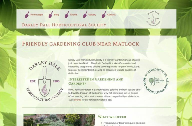 DDHS website design